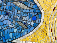 RS Halkin blue yellow close up sized for web